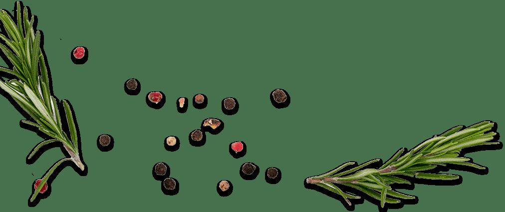 riviera cesenatico rosmarino pepi